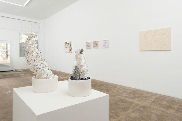 Psychonautics, installation view