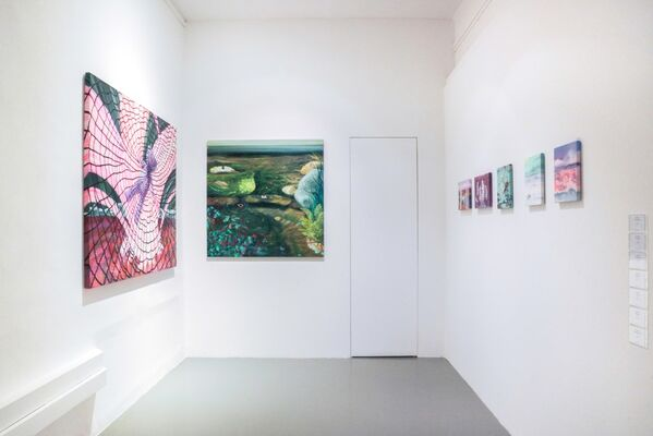 Ode to Wonderland, installation view