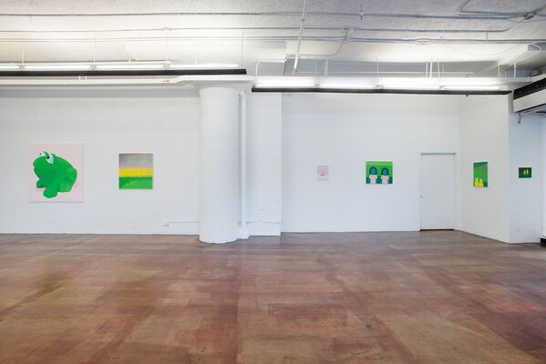 Ayse Wilson: Scouts, installation view