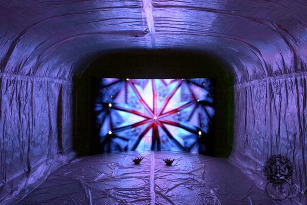 Morphology New York City, installation view