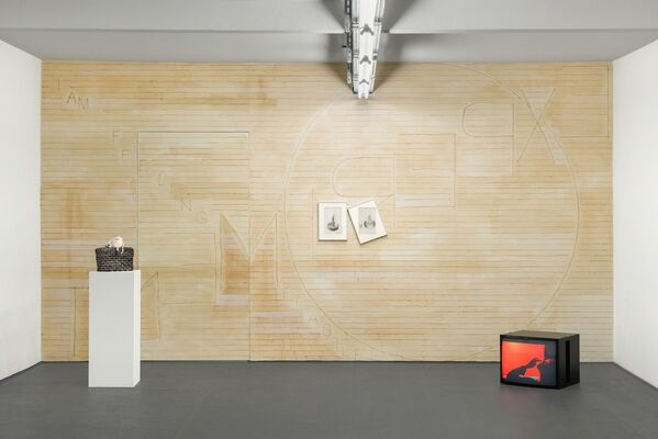 *MIRRORS* | Curated by Elise Lammer, installation view