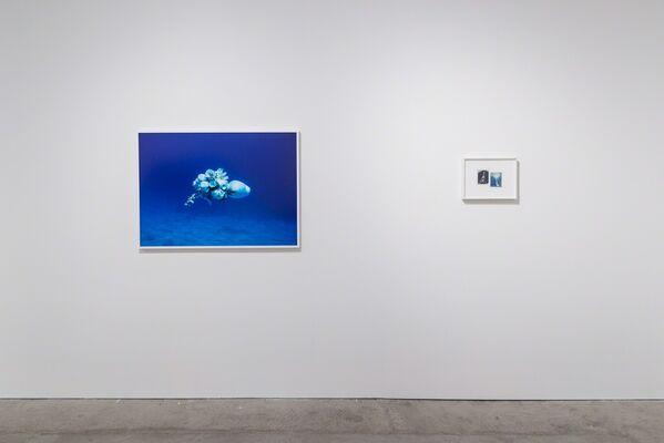Viviane Sassen Pikin Slee & Elspeth Diederix In These Shadows, installation view