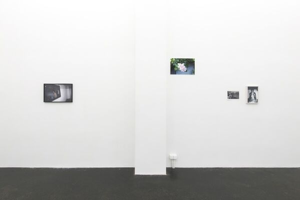 Random Access, installation view