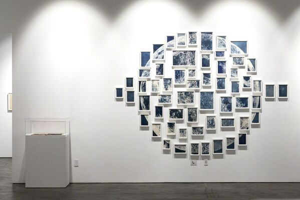 What is an edition, anyway?, installation view