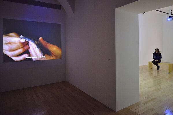 Encuentros Latinoamericanos no. 3: Beatriz Santiago Muñoz. Nuevos materiales, installation view