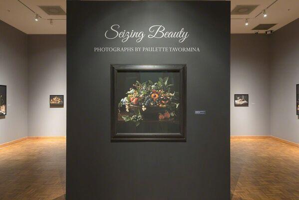Seizing Beauty | Photographs by Paulette Tavormina, installation view