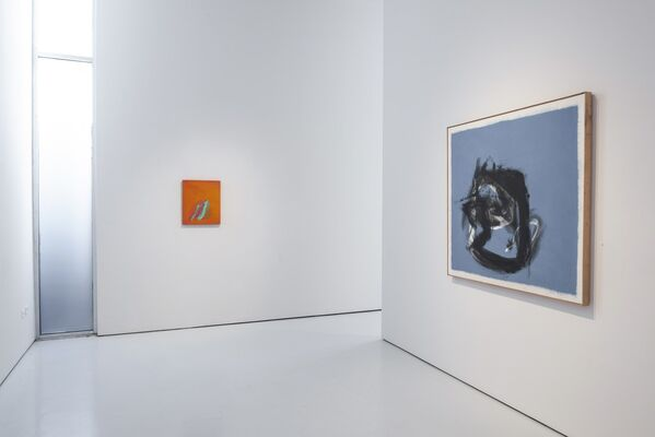 Cleve Gray, installation view