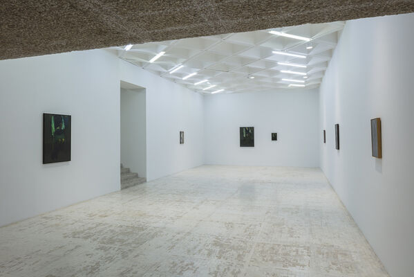 The Chandler. Victor Man, installation view
