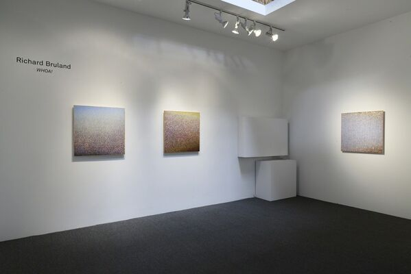 "Richard Bruland's ""Whoa!"", installation view"