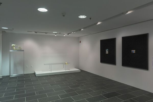 Fictions, installation view