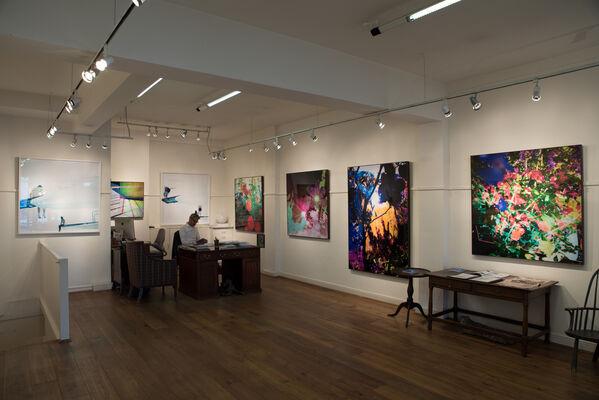 Crane Kalman Brighton at London Art Fair 2020, installation view
