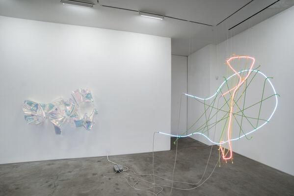 Berta Fischer, installation view