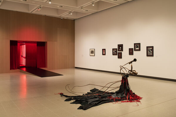 Kiss My Genders, installation view
