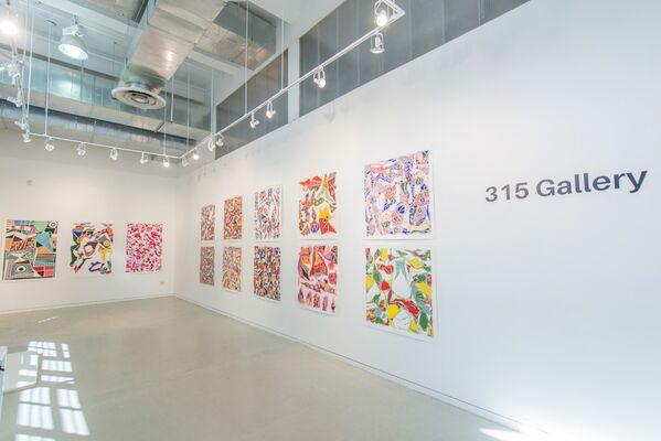 Richard Polsky, installation view
