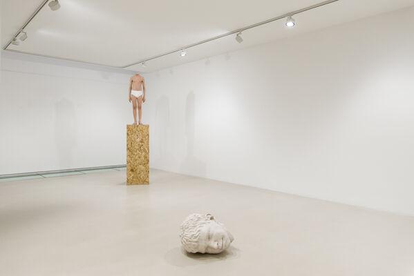 Peter Land   Die dumme Dänen, installation view