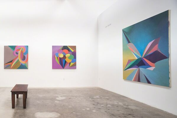 Lavi Daniel, installation view