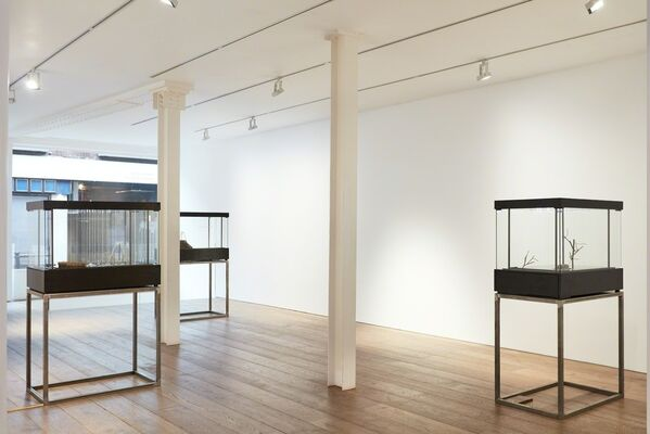 Sebastian Gordin | 'if animals didn't exist...', installation view
