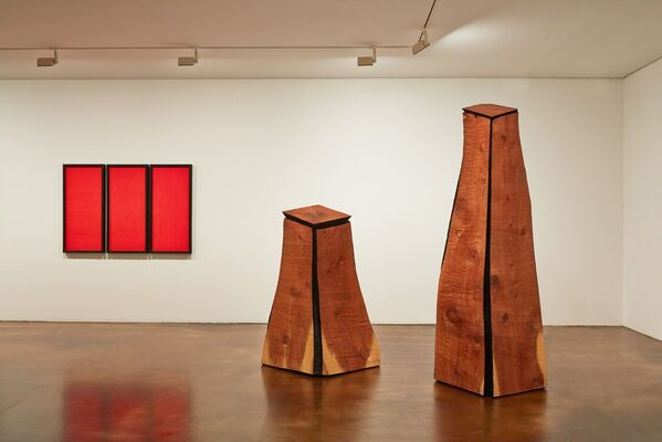 David Nash, installation view