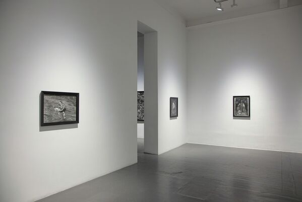 Jeff Olsson: The Thoughts of Vegetables, installation view