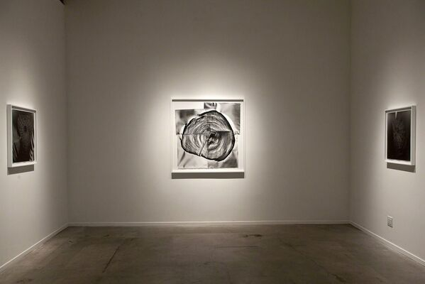 Klea McKenna | Automatic Earth, installation view
