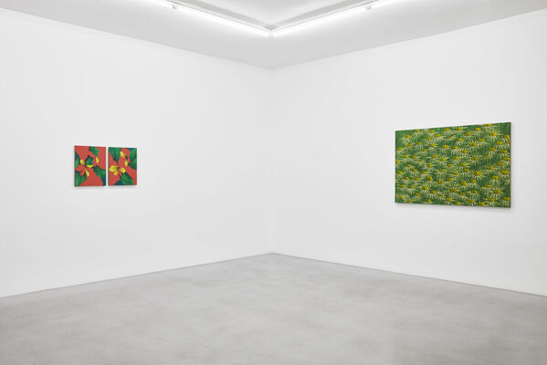 Ryan Mrozowski | Phantom Limb, installation view