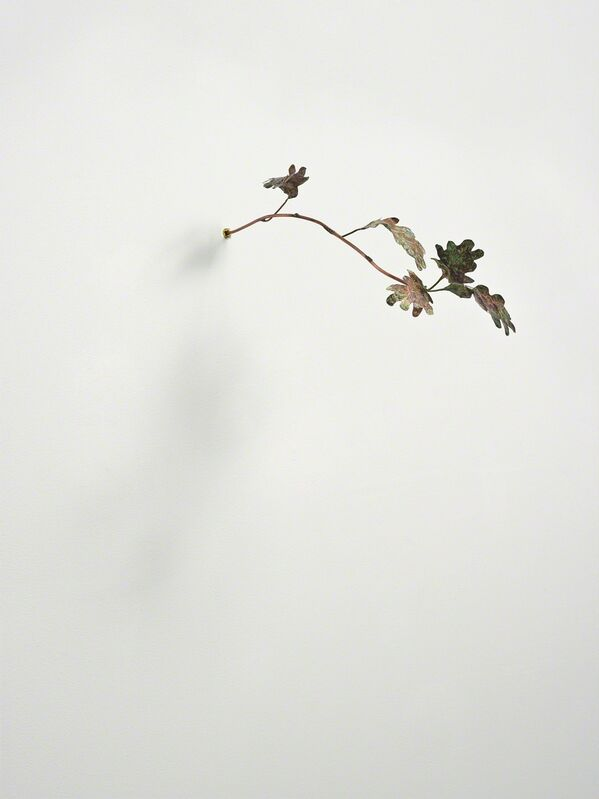 Rolf Nowotny, 'Pinocchio Leaves (oak)', 2013, Sculpture, Copper and wall plug, Christian Andersen