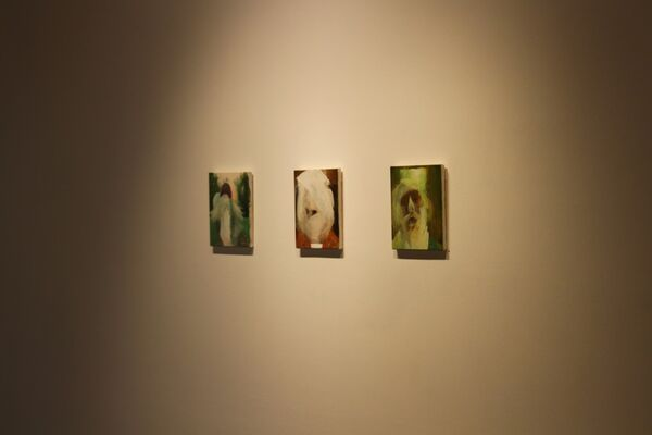 Joseph Noderer: Horse Hill Waugh and Other Views, installation view