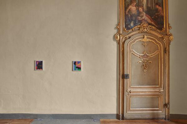 DAMA, installation view
