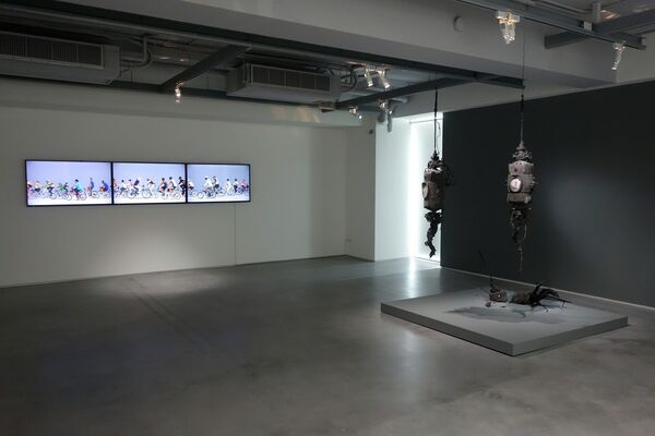 Double Vision  双視, installation view