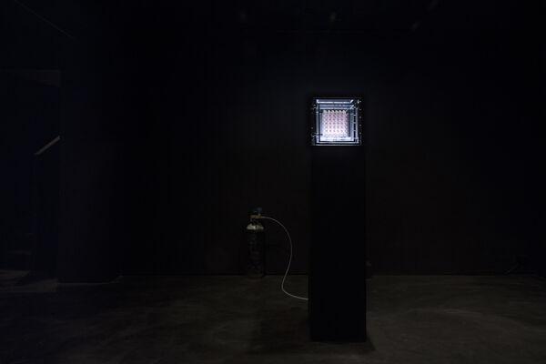 Sean Raspet: New Molecules & Stem Cell Retinoid Screen, installation view