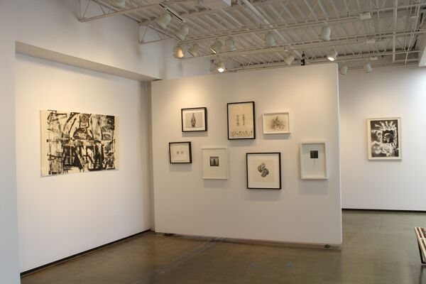 Ivory Black and Flake White, installation view