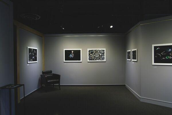 Francine Fleischer: SWIM: The Water In Between, installation view