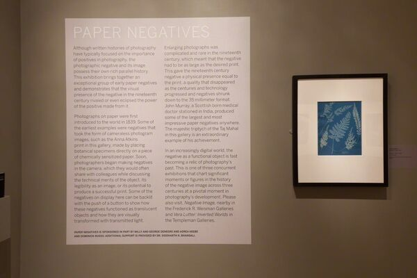 Paper Negatives | Negative Image, installation view