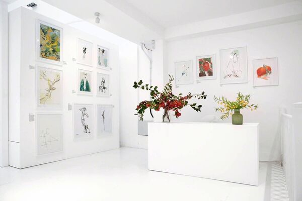 100 Women, installation view