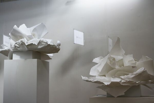 languedeson, installation view