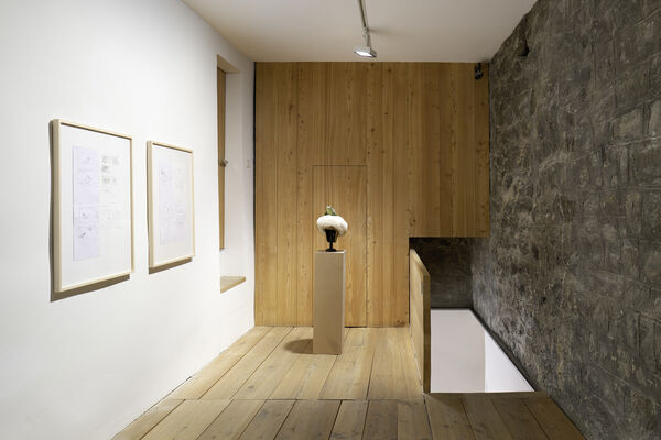 Absolutely Tschudi, installation view