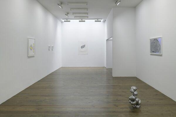 Adam Colton, Silver, installation view