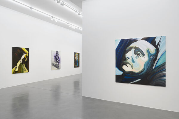 Clare Woods: Doublethink, installation view