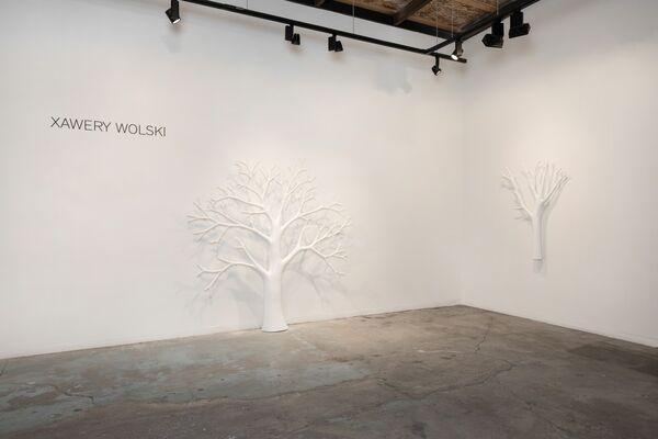 XAWERY WOLSKI, installation view