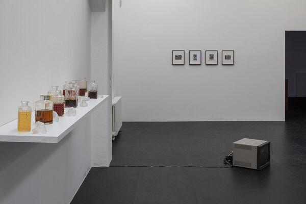 Sense and Sensibilia, installation view
