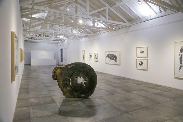 Art Weekend São Paulo 2018, installation view