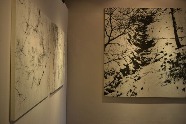 In search of solitude by Shouya Grigg, installation view