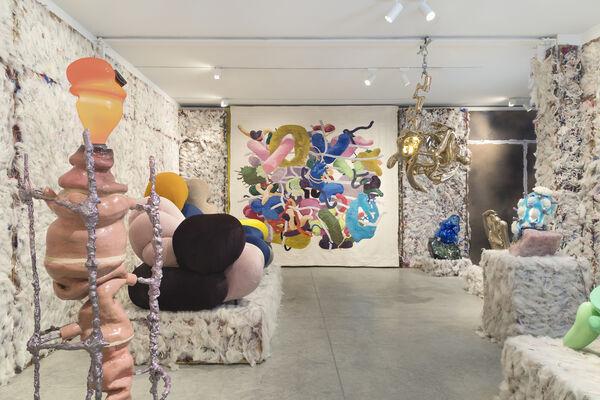 Misha Kahn: Soft Bodies, Hard Spaces, installation view