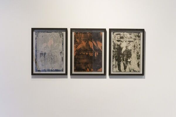 Nature Paintings, installation view