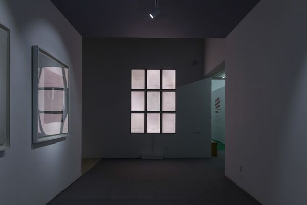 Toward the Emergence of Resistance, installation view