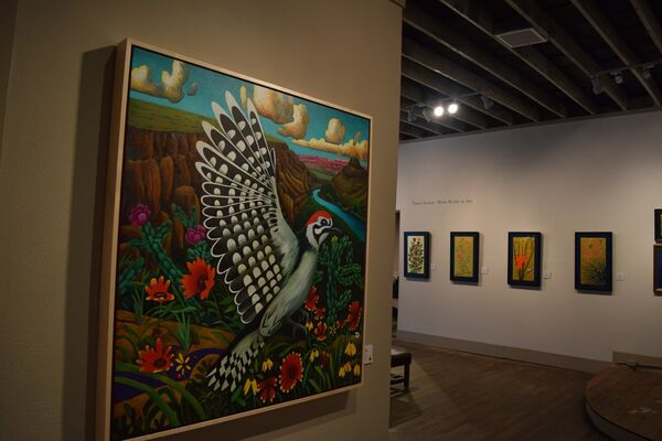 Texas Aviary: More Birds in Art, installation view