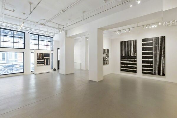 Cynefin, installation view