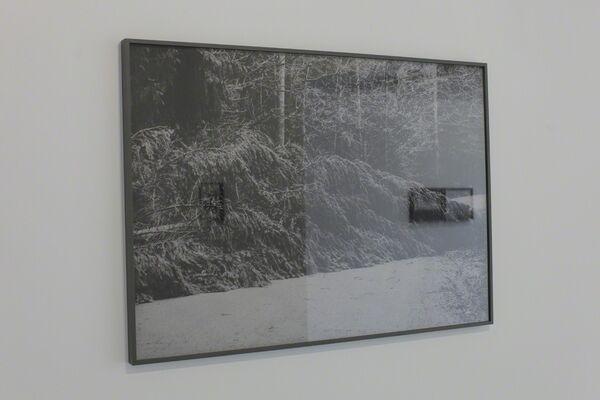 Weronika Ławniczak: View, installation view
