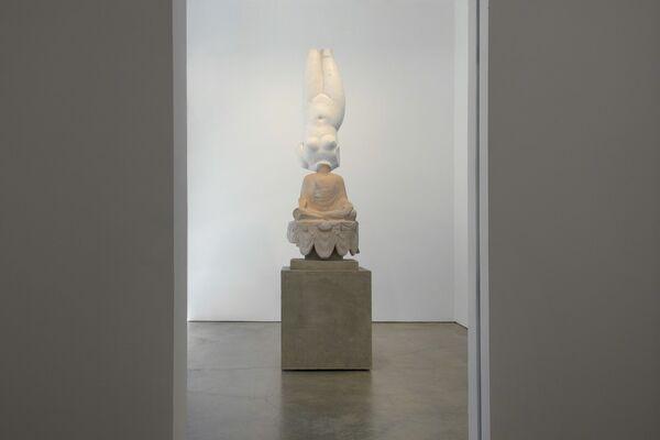 Xu Zhen, installation view