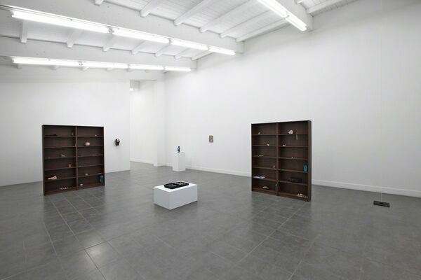 """Nicolàs Lamas """"The Structure of the Wild"""", installation view"""